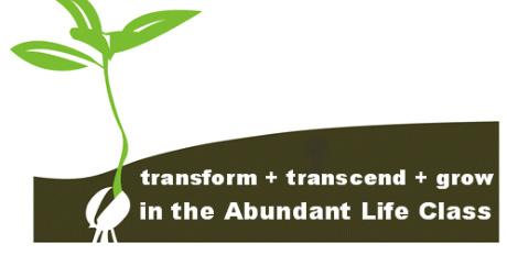 abundant_life_class_banner